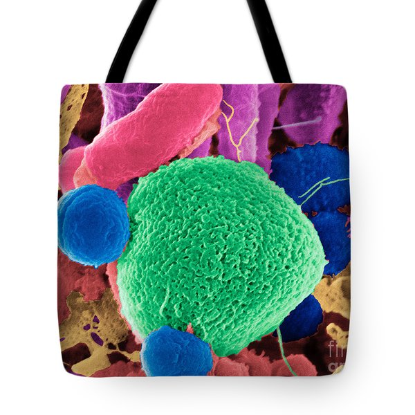 Giardia Lamblia Cyst Tote Bag by Dr Gary Gaugler