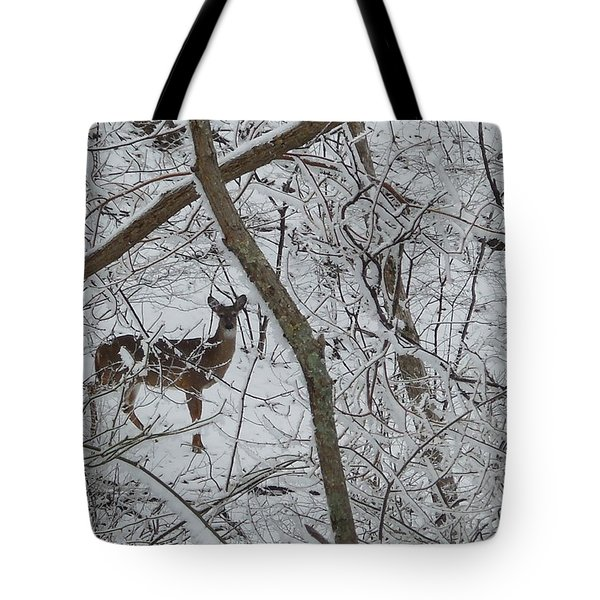 Gift In The Woods Tote Bag