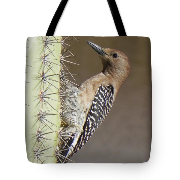 Tote Bag featuring the photograph Gila Woodpecker by Deb Halloran