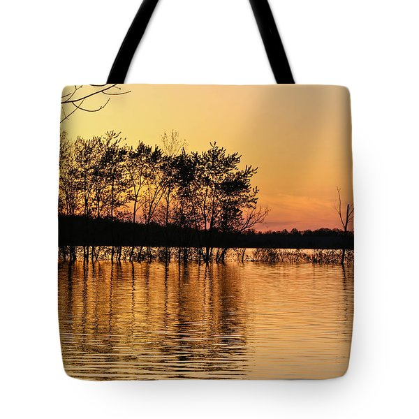 Tote Bag featuring the photograph Gilded Sunset by Julie Andel
