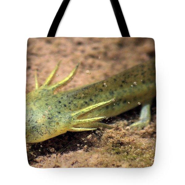 Gills Tote Bag