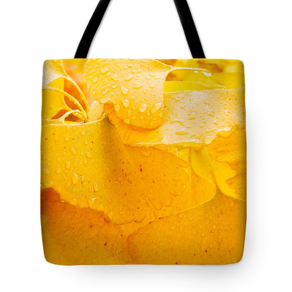 Tote Bag featuring the photograph Ginkgo Biloba Leaves by Vizual Studio