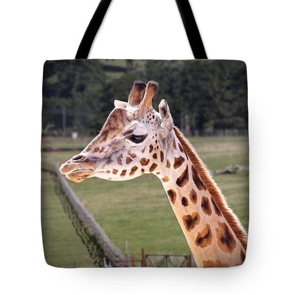 Giraffe 02 Tote Bag