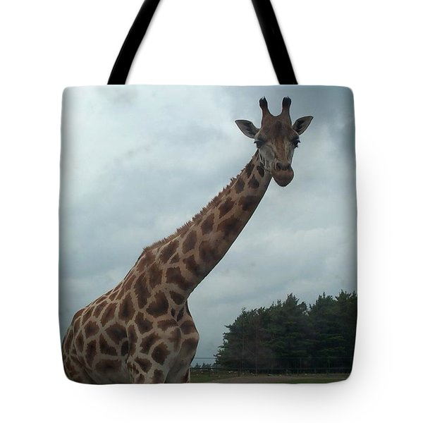 Tote Bag featuring the photograph Giraffe by Barbara McDevitt