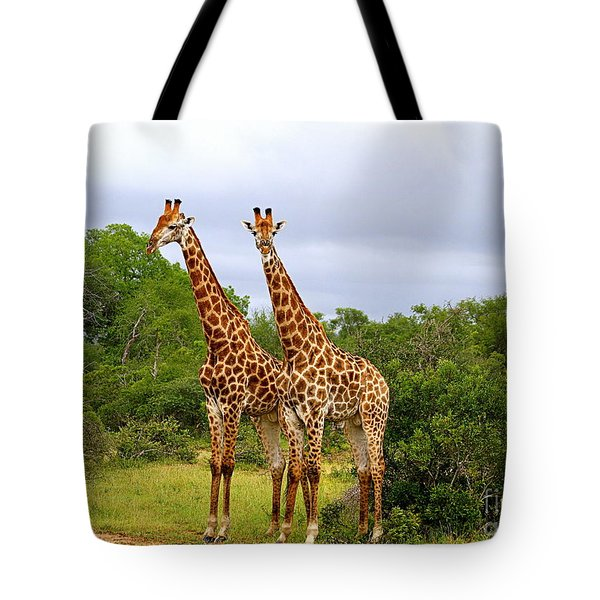 Giraffe Males Before The Storm Tote Bag