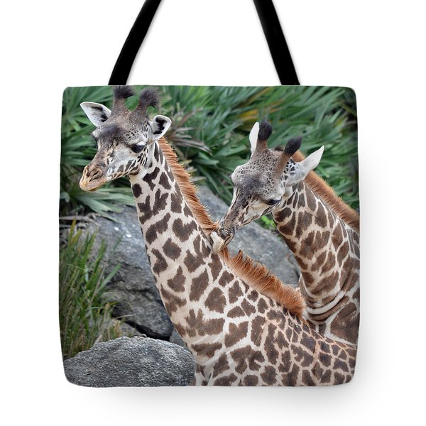 Giraffe Massage Tote Bag by Richard Bryce and Family