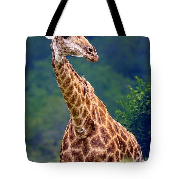 Giraffe Portrait Closeup Tote Bag