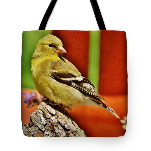 Tote Bag featuring the photograph Girlie Goldfinch by VLee Watson