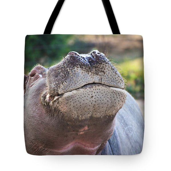 Tote Bag featuring the photograph Give Me A Kiss Hippo by Eti Reid