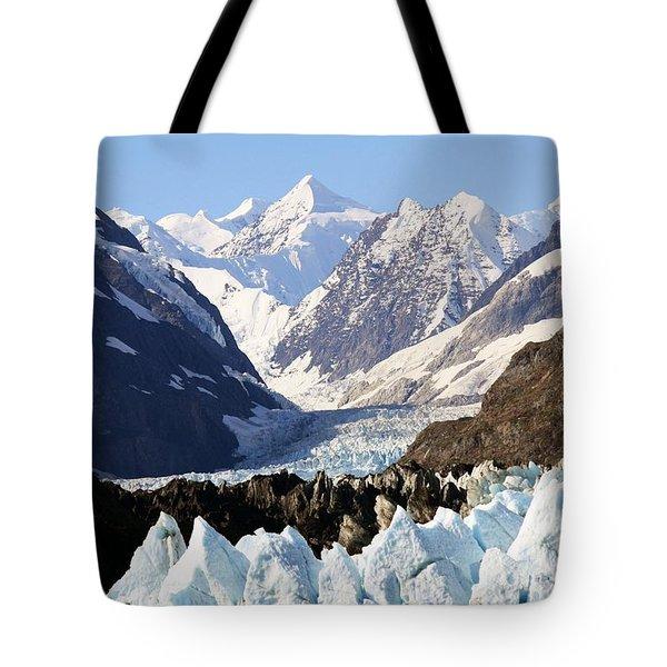 Tote Bag featuring the photograph Glacier Bay Alaska by Sonya Lang