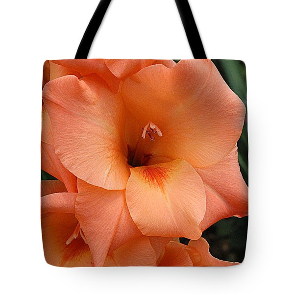 Gladiola In Peach Tote Bag