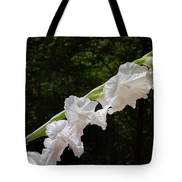 Gladiolas In The Rain Tote Bag by Farol Tomson