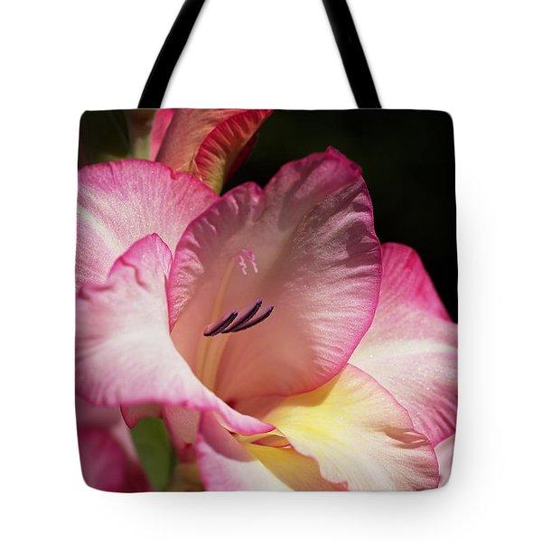Gladiolus In Pink Tote Bag by Joy Watson