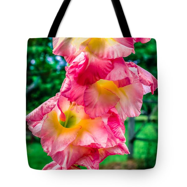 Tote Bag featuring the photograph Gladiolus by Rob Sellers