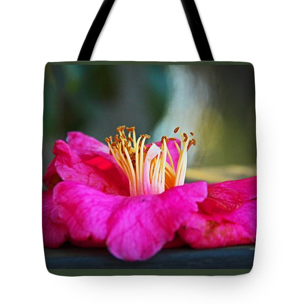 Glencairn Garden 020 Tote Bag by Andy Lawless