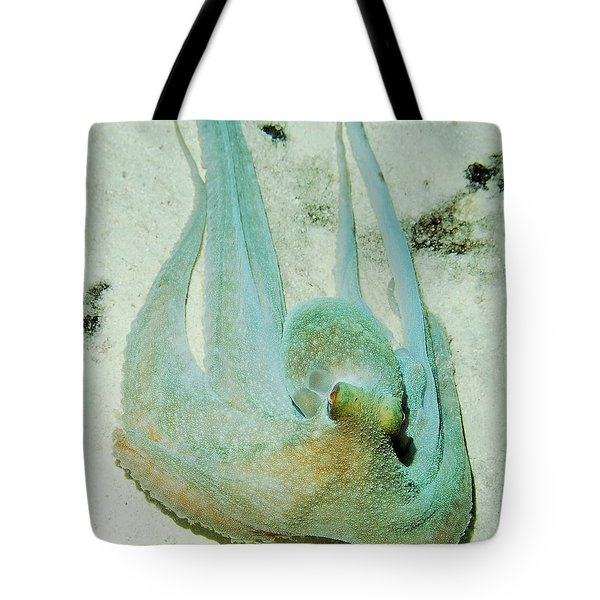 Tote Bag featuring the photograph Gliding Reef Octopus by Amy McDaniel