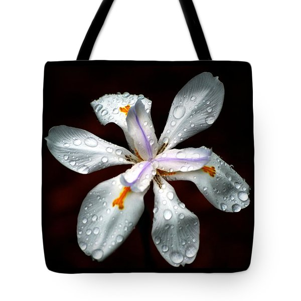 Glisten Tote Bag by Angela Murray