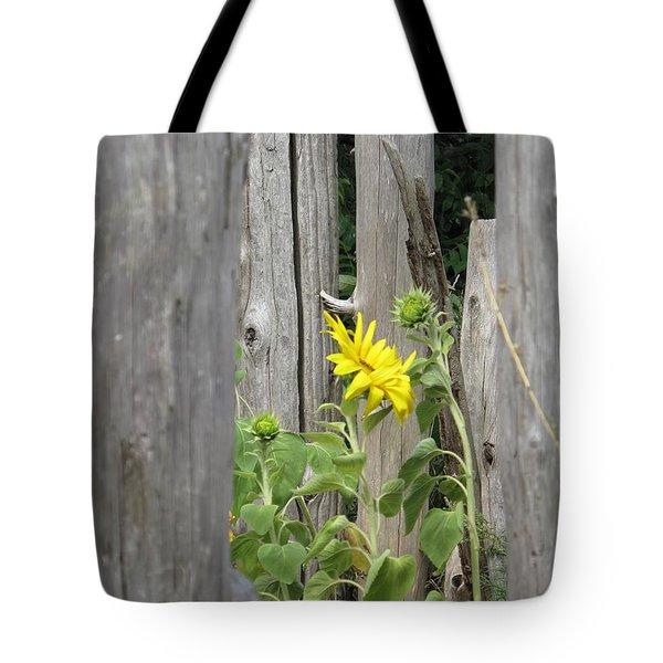 Gloria's Favorite Tote Bag by Barbara McDevitt