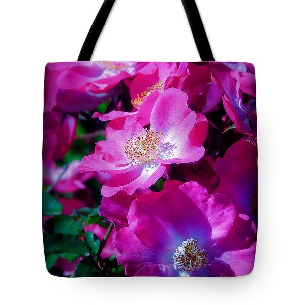 Glorious Blooms Tote Bag by Lucinda Walter