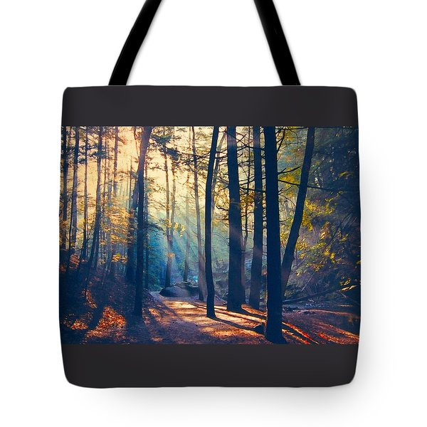 Glorious Forest Morning Tote Bag