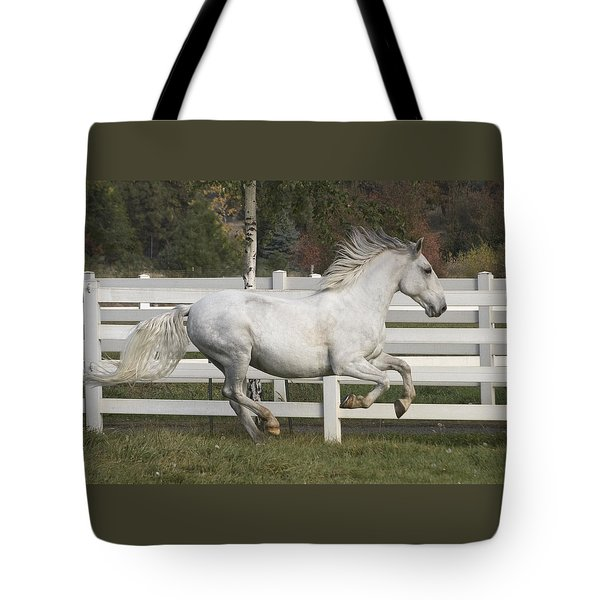 Tote Bag featuring the photograph Glorious Gunther D2972 by Wes and Dotty Weber