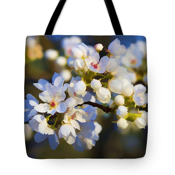 Glorious Light Tote Bag by Kathy Clark