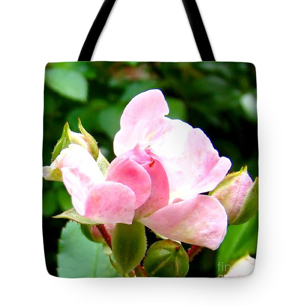 Glorious Rosebud Tote Bag