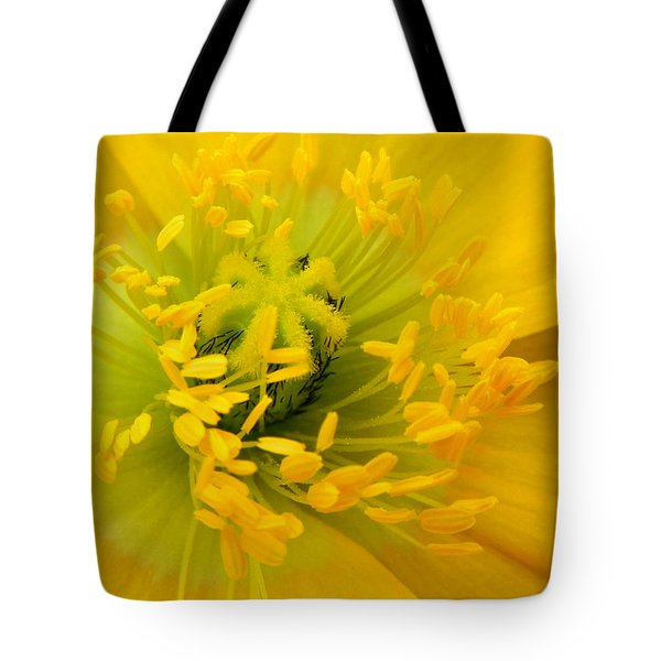 Tote Bag featuring the photograph Glory Of Nature by Deb Halloran