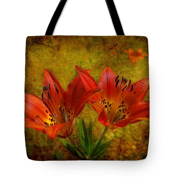 Glory Of The Plains Tote Bag by Blair Wainman