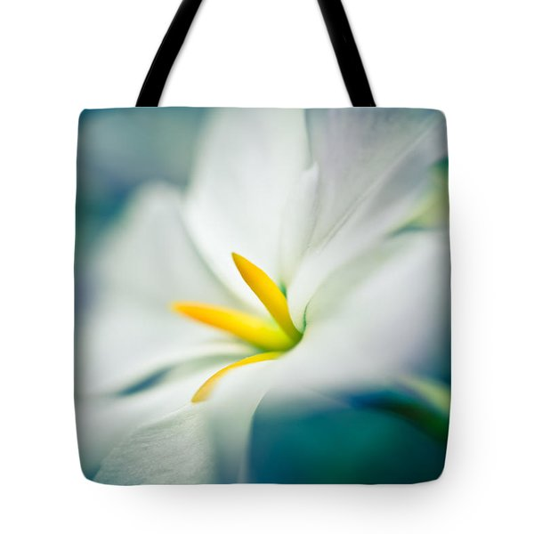 Glory Of The Sun Tote Bag