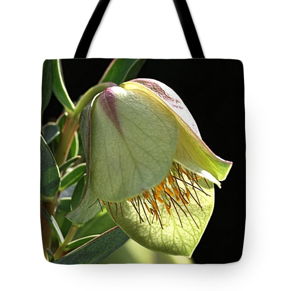 Glow Of The Bell Tote Bag