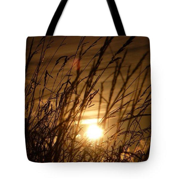 Glow Through The Grass Tote Bag