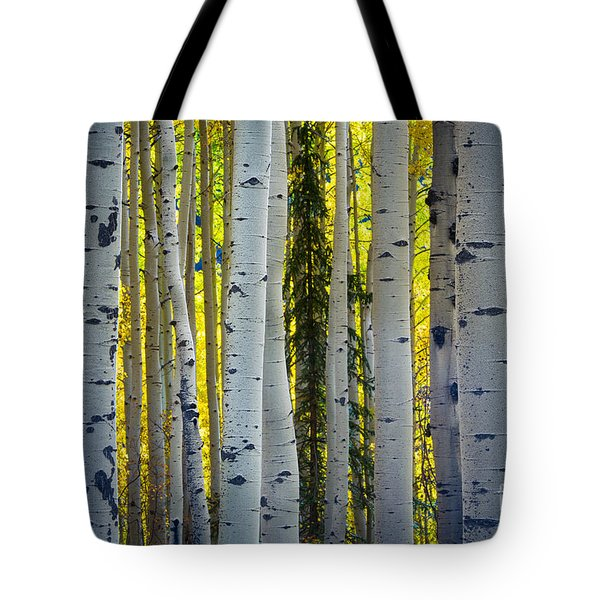 Glowing Aspens Tote Bag by Inge Johnsson