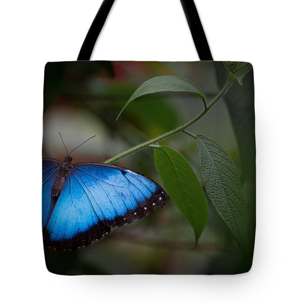 Glowing Blue Tote Bag by Penny Lisowski