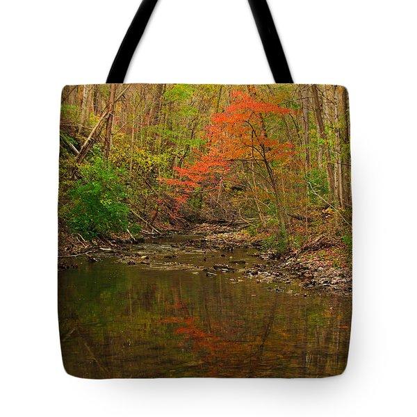 Glowing Fall Tote Bag