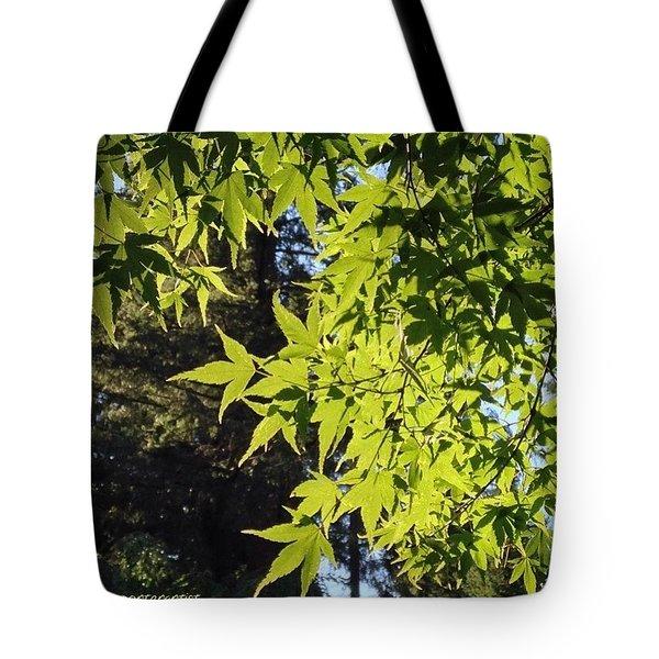 Glowing Greens My Favorite Maple Tree Tote Bag