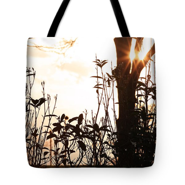Glowing Landscape Tote Bag