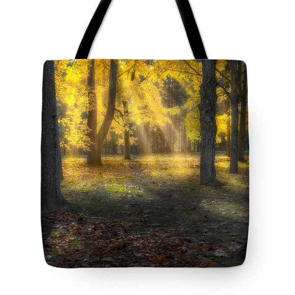 Glowing Maples Tote Bag by Bill Wakeley