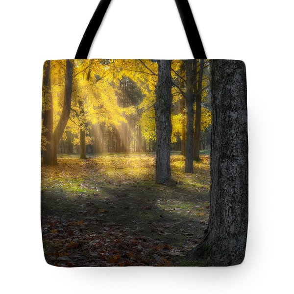 Glowing Maples Square Tote Bag by Bill Wakeley