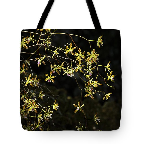 Glowing Orchids Tote Bag