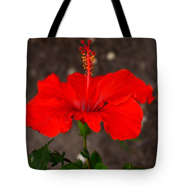Glowing Red Hibiscus Tote Bag