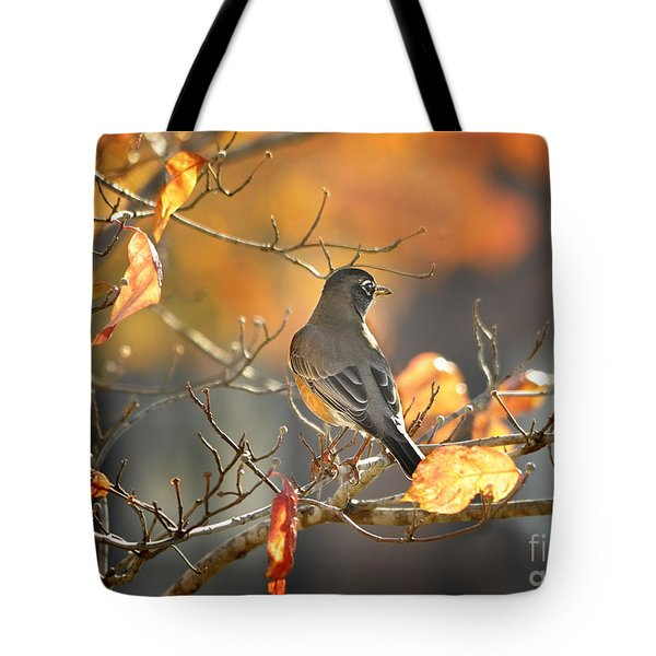 Glowing Robin 2 Tote Bag