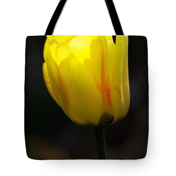 Glowing Tulip Tote Bag by Shelly Gunderson