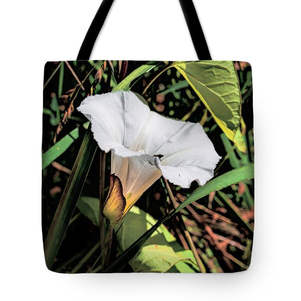 Tote Bag featuring the photograph Glowing White Flower by Leif Sohlman