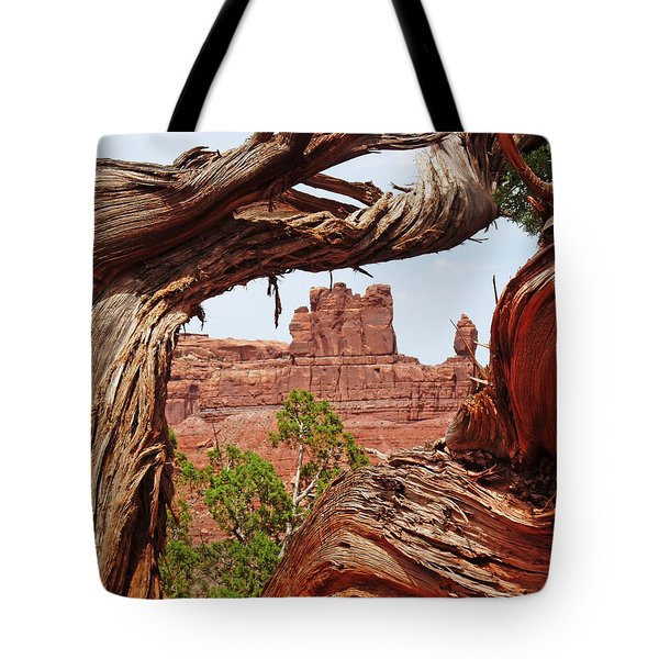 Tote Bag featuring the photograph Gnarly Tree by Alan Socolik