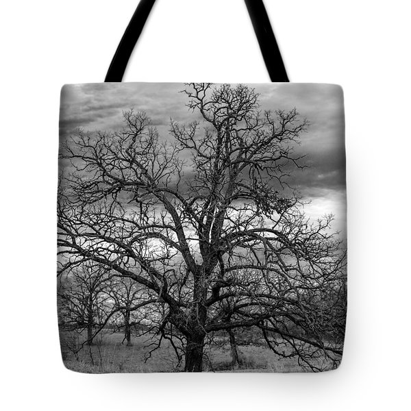 Tote Bag featuring the photograph Gnarly Tree by Sennie Pierson