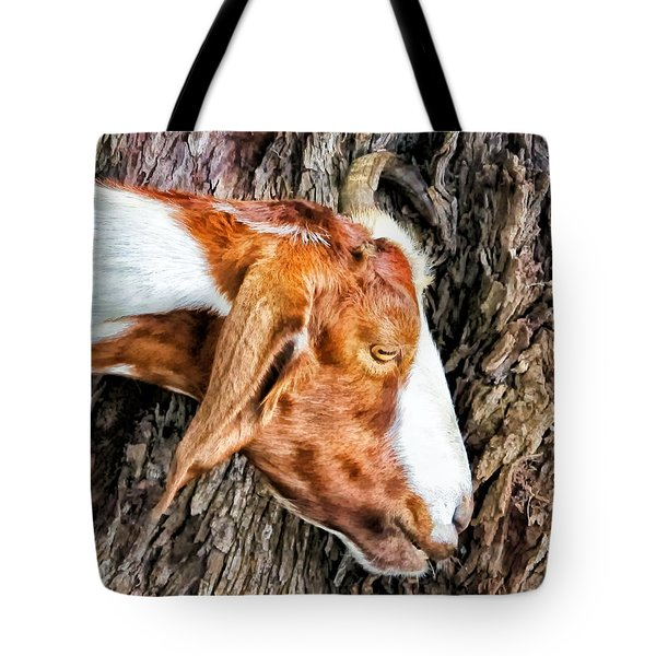 Tote Bag featuring the photograph Goat 3 by Dawn Eshelman