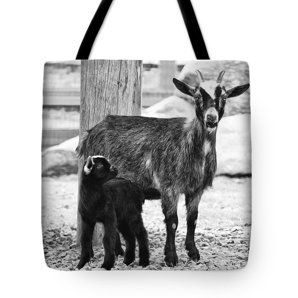 Goat Baby And Mother Tote Bag