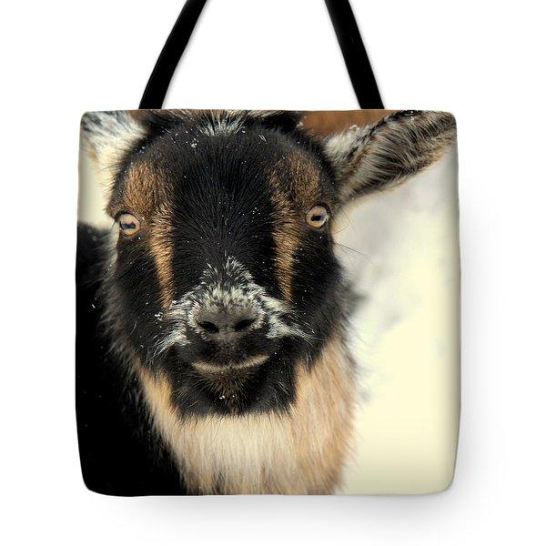 Goatstache Tote Bag by Kathy Bassett