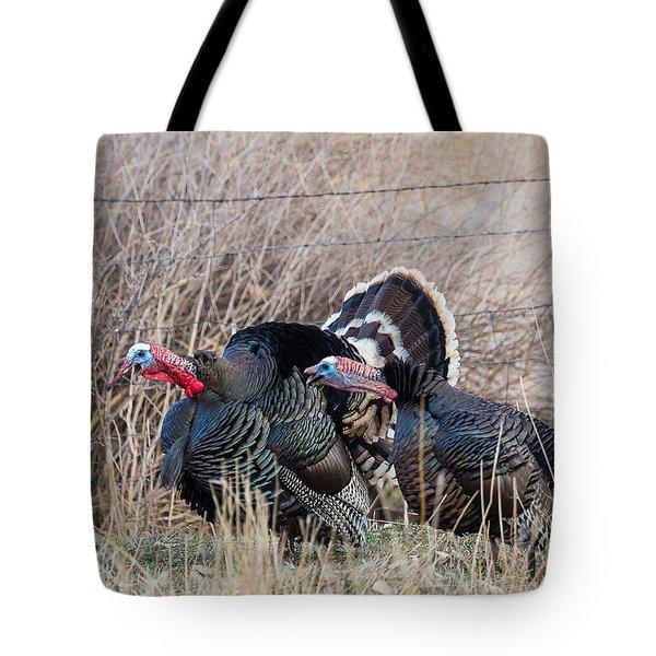 Gobbling Turkeys Tote Bag